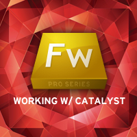 Fireworks Pro Series: Working with Flash Catalyst